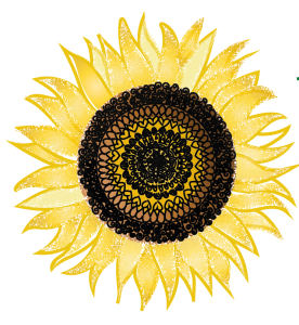 Be Something Yoga